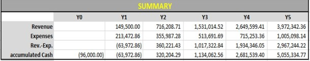 cash flow summary