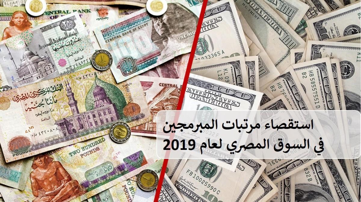 استقصاء مرتبات المبرمجين في السوق المصري 2019